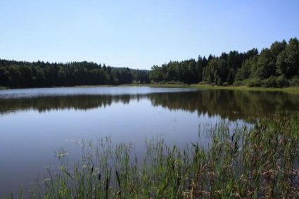 Rybník Pelhřimov